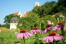Historischer Burggarten