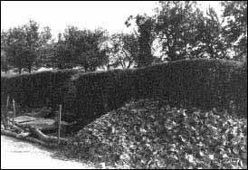 Meterdicke Scherbenpakete kennzeichnen die Raerener Grabungen.